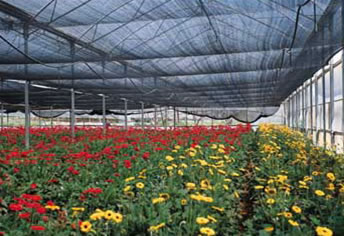 Shade Netting,Garden Greenhouse Shade Nets,Outdoor Shade Sail,Monofilament Shade Cloth